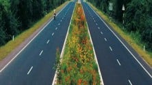 My TV : NHAI awards Dilip Buildcon Rs 911 cr project; completion in 2 yr
